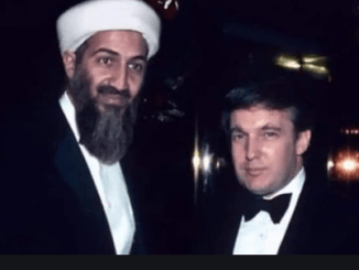 Osama Bin Laden and Donald Trump