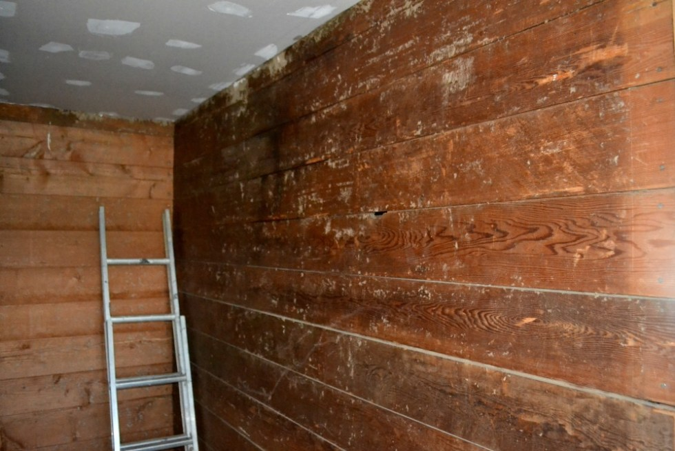 Original shiplap walls after removing wallpaper and before sanding
