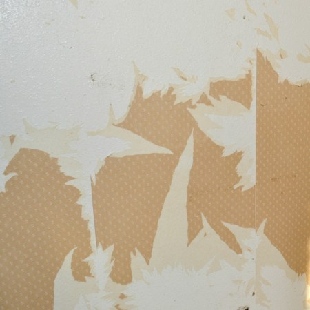 In the process of removing wallpaper