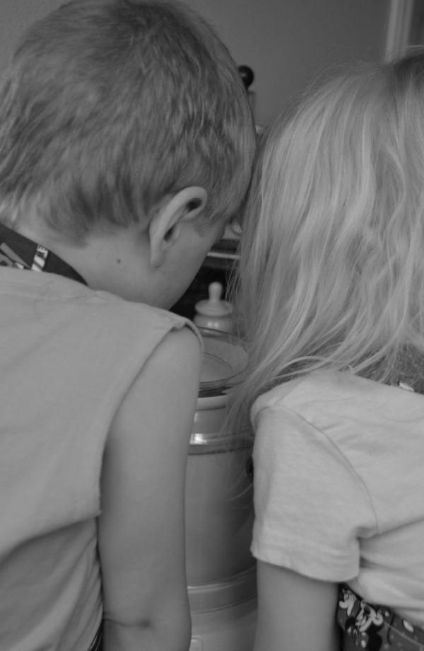 Kids watching ice cream maker diligently