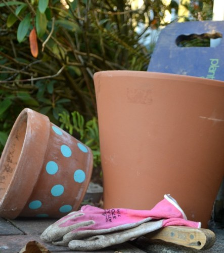 The best gift ideas for any gardener