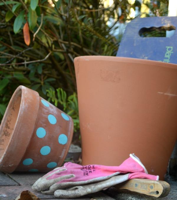 Best Gift Ideas for a Gardener