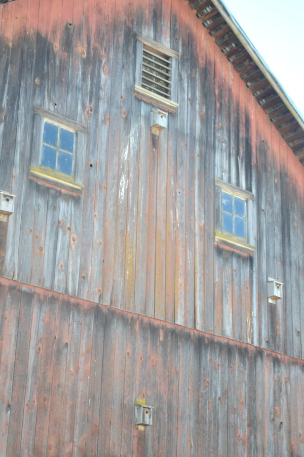 A closer up view of barn front, faded red in color with small birdhouses mounted all over the front