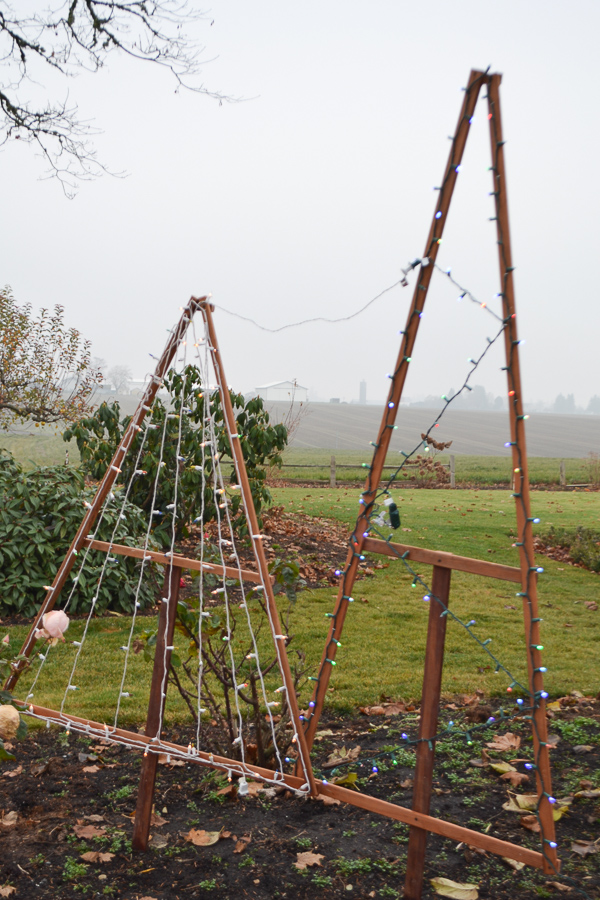 Two Christmas tree triangle frames stuck in the gound with Christmas lights attached and on