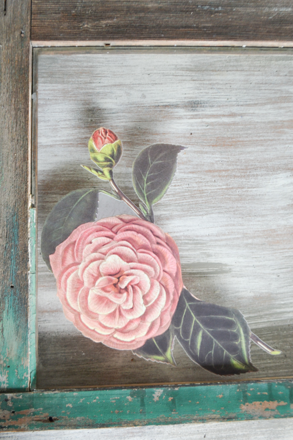 A close up of a pink rose and leaves that has been transferred onto a glass window pane