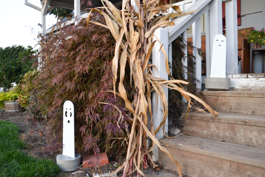 A front porch with corn stalks and fan blade ghosts in concrete