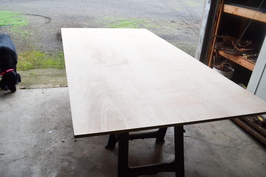 A sheet of plywood laying on two sawhorses on a concrete floor