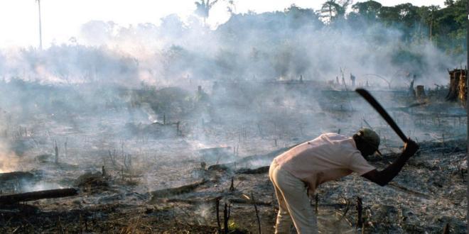 Dessous la cendre : sur le Brésil #1