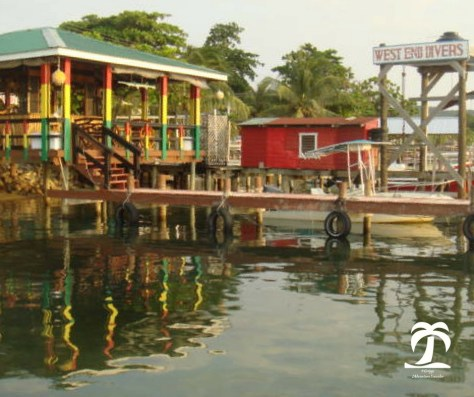Roatan One of the Bay Islands in the Caribbean, Honduras - 1AdventureTraveler | Journey with me to this lush green island with white sand and beautiful fish in the crystal clear water. | caribbean | scuba diving | snorkeling | travel | scuba | beach | ocean |