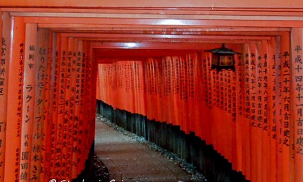Japan Travel Where You See Fascinating Locations