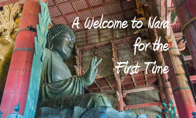 A Welcome to Nara for the First Time