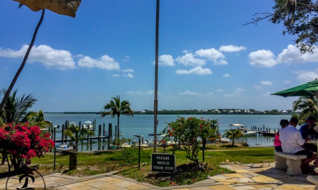 Cheeseburger in Paradise On The Island of Cabbage Key