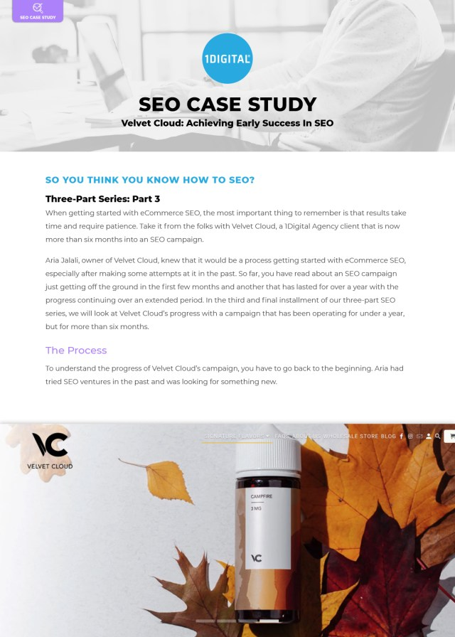 Velvet Cloud: Achieving Early Success In SEO