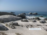 The world famous Boulders Beach in Simons Town, Cape Town's largest jackass penguin population
