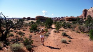 Canyonlands, The Needles: Chelser Park
