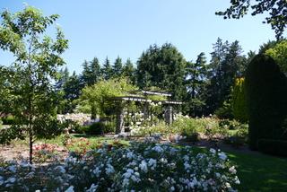 Rosegarden Seattle