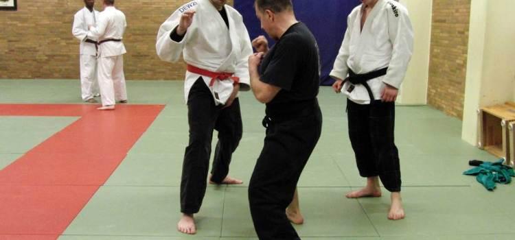 Judo meets Karate