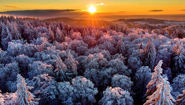 Almanya'da 1880 yılının rekoru kırıldı: Sıcaklık 42 derece yükseldi