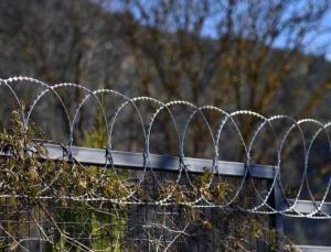 fethiye'de hayvanlara zarar verdiği için bahçelere 'jiletli tel' çekilmesi yasaklandı