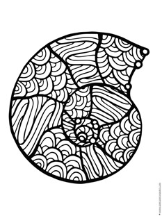 seashell coloring pages 1 1 1 1