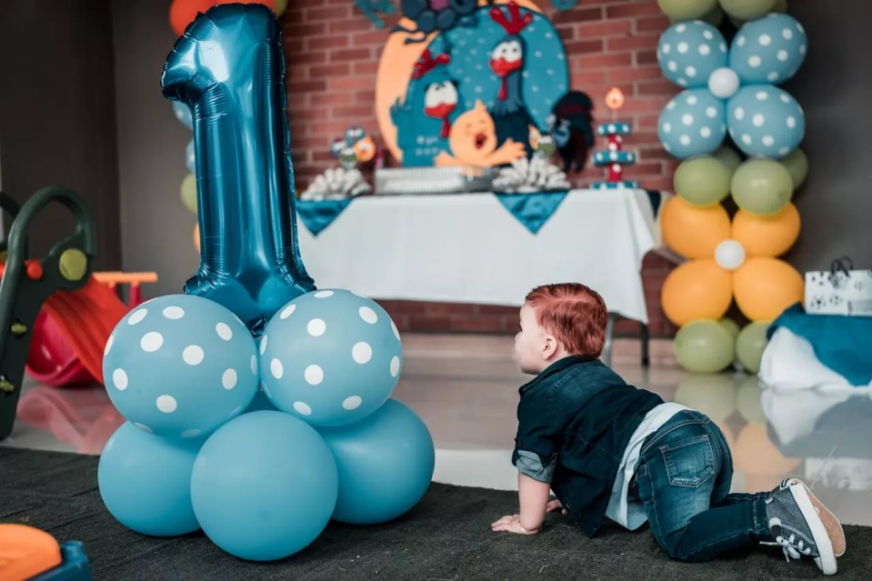 1st birthday party them ideas and how to make the party a success and not a failure