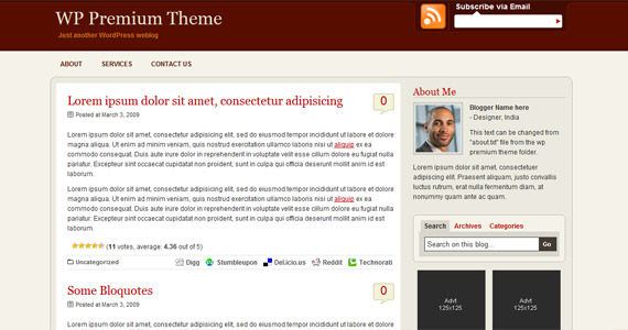 wp-premium-professional-wordpress-theme