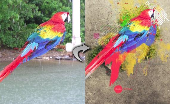 Special Photo Effect Photoshop tutorials