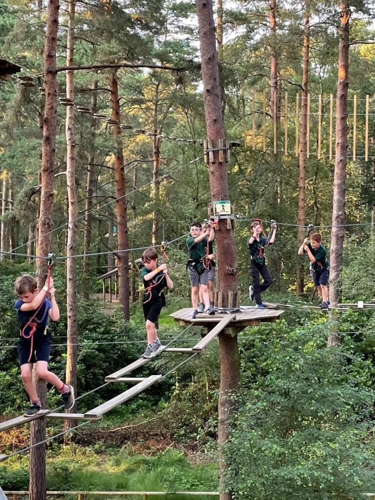 Read more about the article Hawks Cubs Go Ape at Swinley Forest