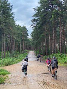 Merlin Scouts Explore Swinley Forest