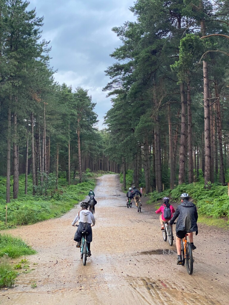 Read more about the article Merlin Scouts Explore Swinley Forest