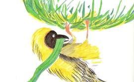 L'ornithomancie