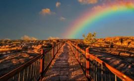 Rêver d'un arc-en-ciel