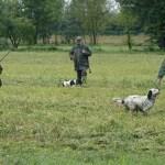 Caccia, Il TAR respinge il ricorso degli animalisti contro il calendario venatorio