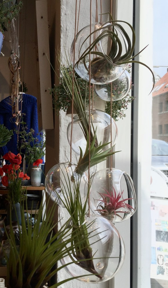 About form and function Dekorative bubbles til de sjove airplants Læs mere om About form and function her