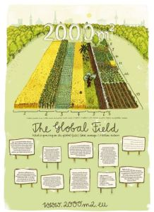 2000m2_global_fields_poster