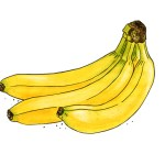 Banane Weltacker