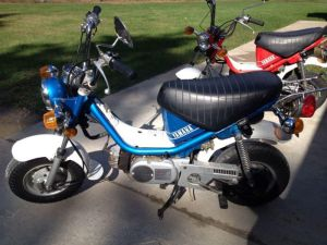 1980 & 1981 Yamaha Chappy LB50 Mopeds for sale on 2040motos