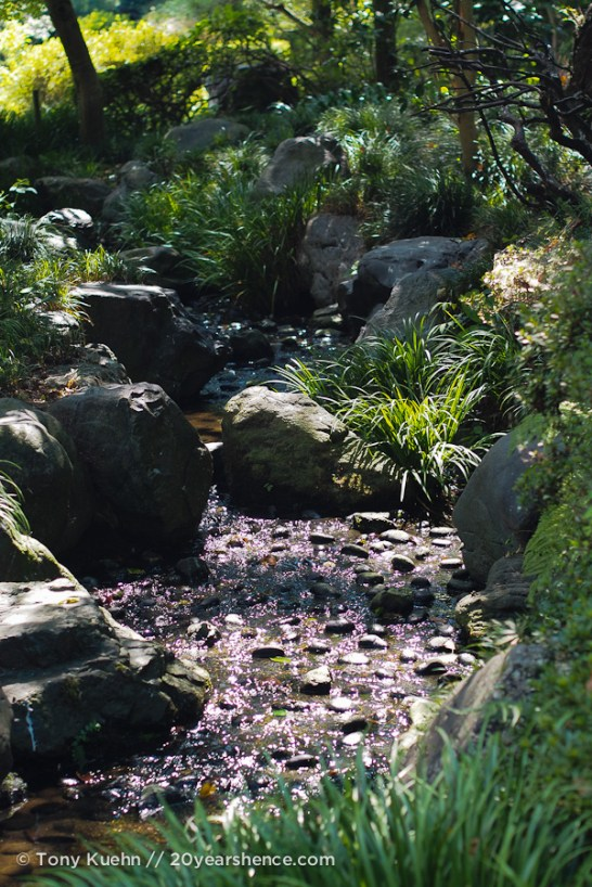 A little stream in a park below the castle grounds