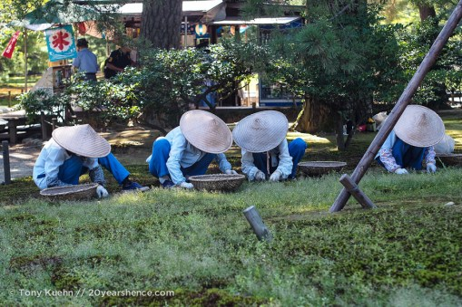 Gardeners tending to the lawns