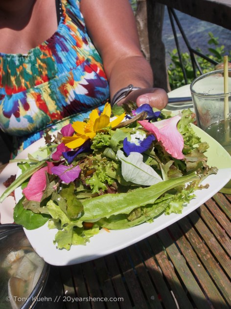 a delicious fresh salad complete with edible flowers and a homemade honey-mustard vinaigrette (so it wasn't just yummy, but also pretty!)