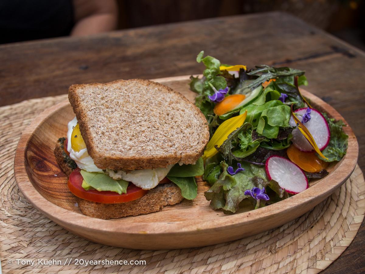 Sandwich, San Poncho, Mexico