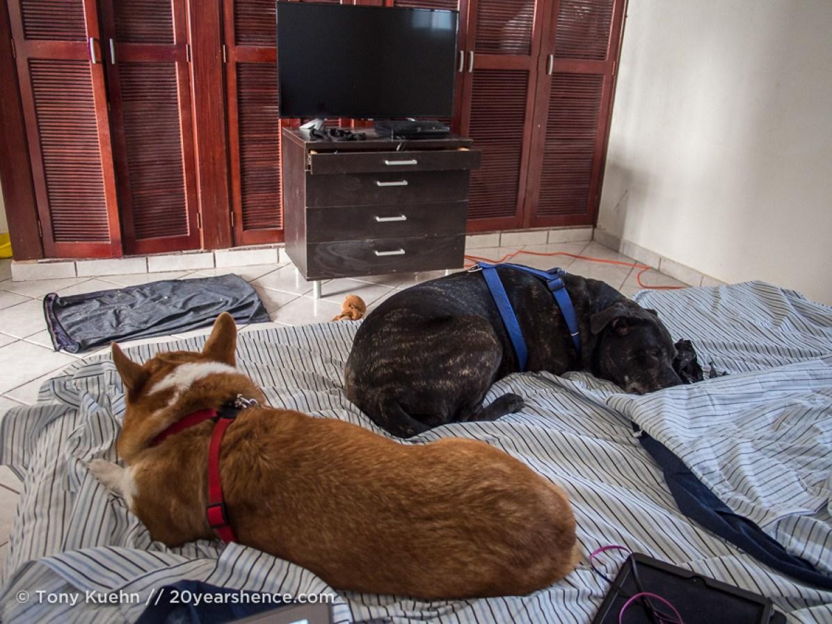 Our apartment in Playa del Carmen