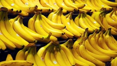 فاكهة الموز