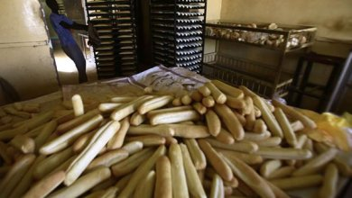 احتجاجات الخبز