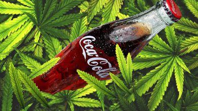 """صورة تعبيرية -""""حشيش"""" بـ""""الكوكا كولا"""""""