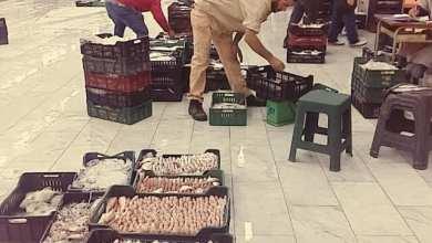 سوق باب البحر