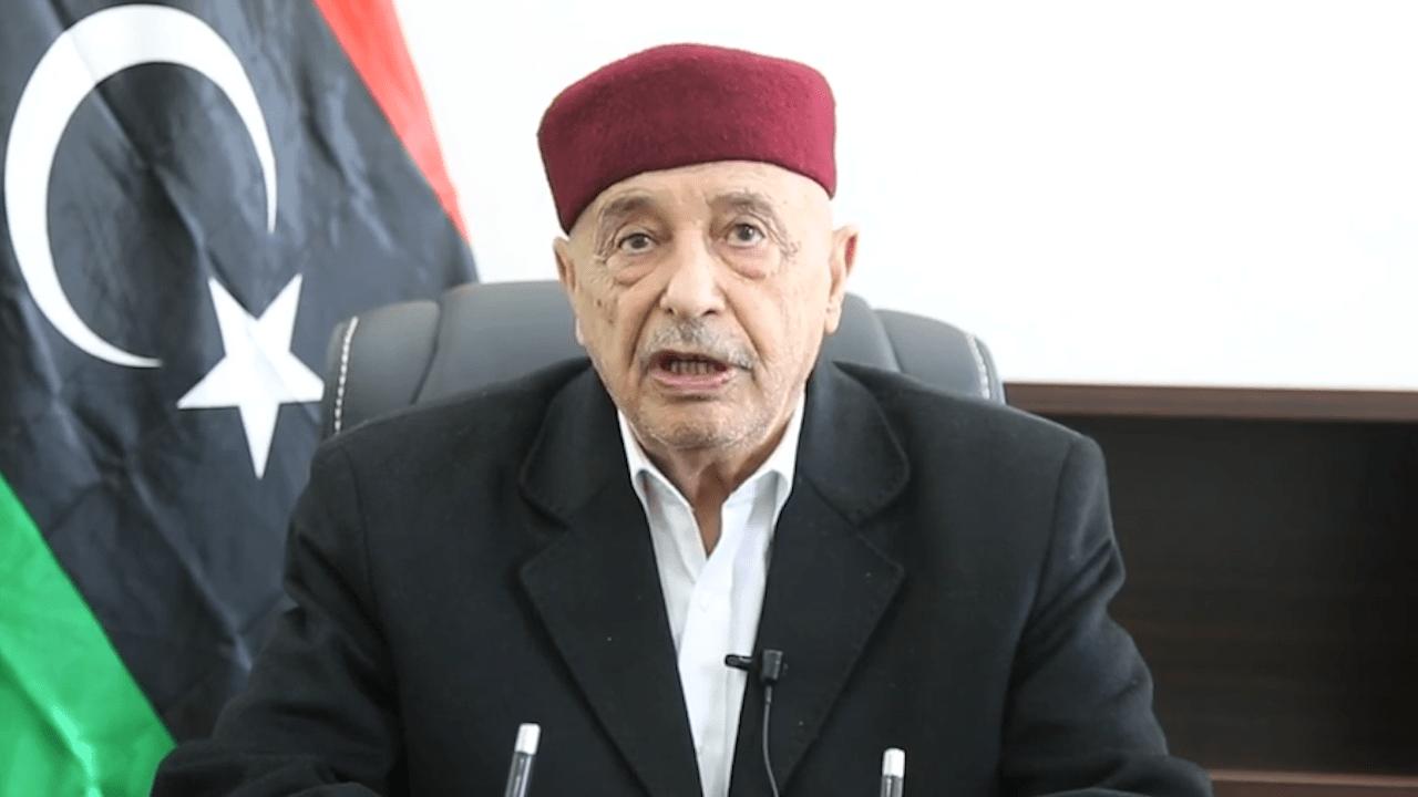 رئيس مجلس النواب المستشار عقيلة صالح