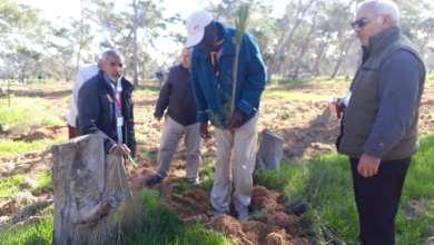 غابة جودائم تشهد حملة لغرس أكثر من 8000 شجرة