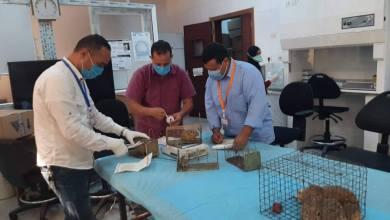 فريق من المركز الوطني لمكافحة الأمراض في زيارة إلى بلدة الرابطة بالجبل الغربي لمكافحة مرض اللشمانيا