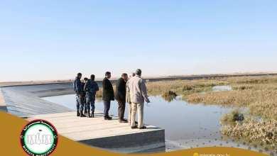 بلدي مصراتة يخطط لإقامة محمية على مشروع ساسو الزراعي
